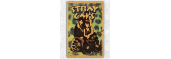 STRAY CATS 2019 - Poster